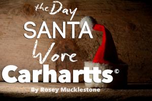 Santa Carhartts Pinterest