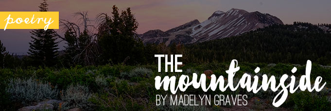 The Mountainside