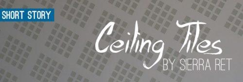Ceiling_Tiles_slider